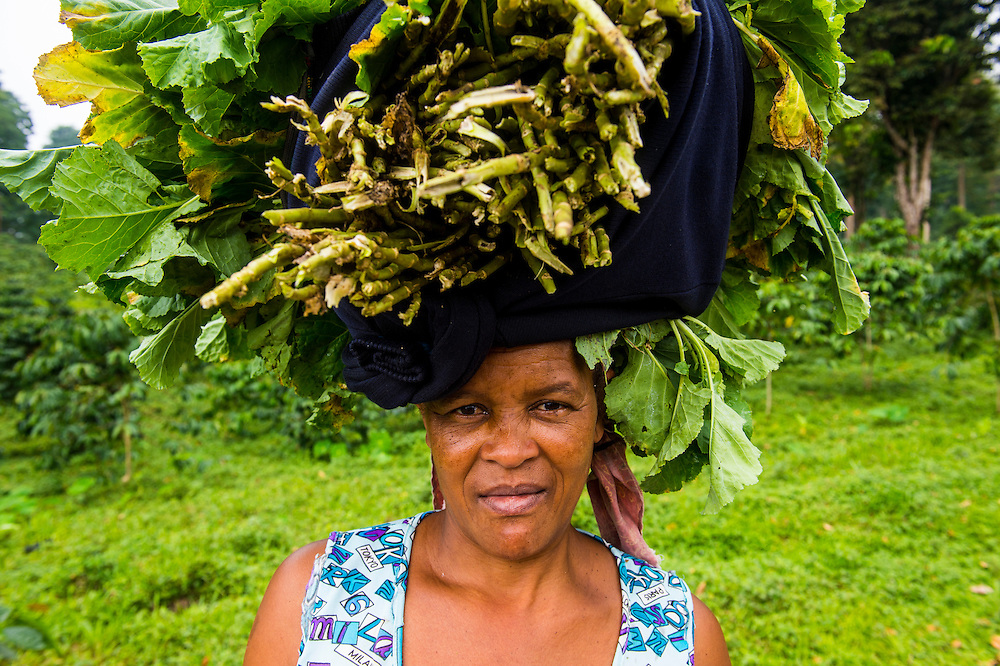 Woman carries a huge stack of vegetables on her head, Sao Tome, Sao Tome and Principe, Atlantic ocean