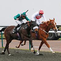 El Libertador and Shane Kelly winning the 2.50 race