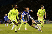 Sheffield Wednesday v Brighton and Hove Albion 130516