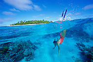 Snorkelling in Ha'apai coral reefs, Tonga..To use this image please contact Getty Images. Getty #200027702-001