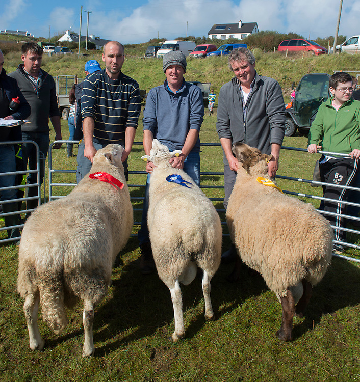 Clare Island Ram Fair &amp; Sheep Dog Trials.<br /> first second and third place, Michael Oliver Moran Clare Island, Eammon Heanue from Inishturk and Sean O'Grady from Clare Island  with their aged blackface Rams . Pic: Michael Mc Laughlin
