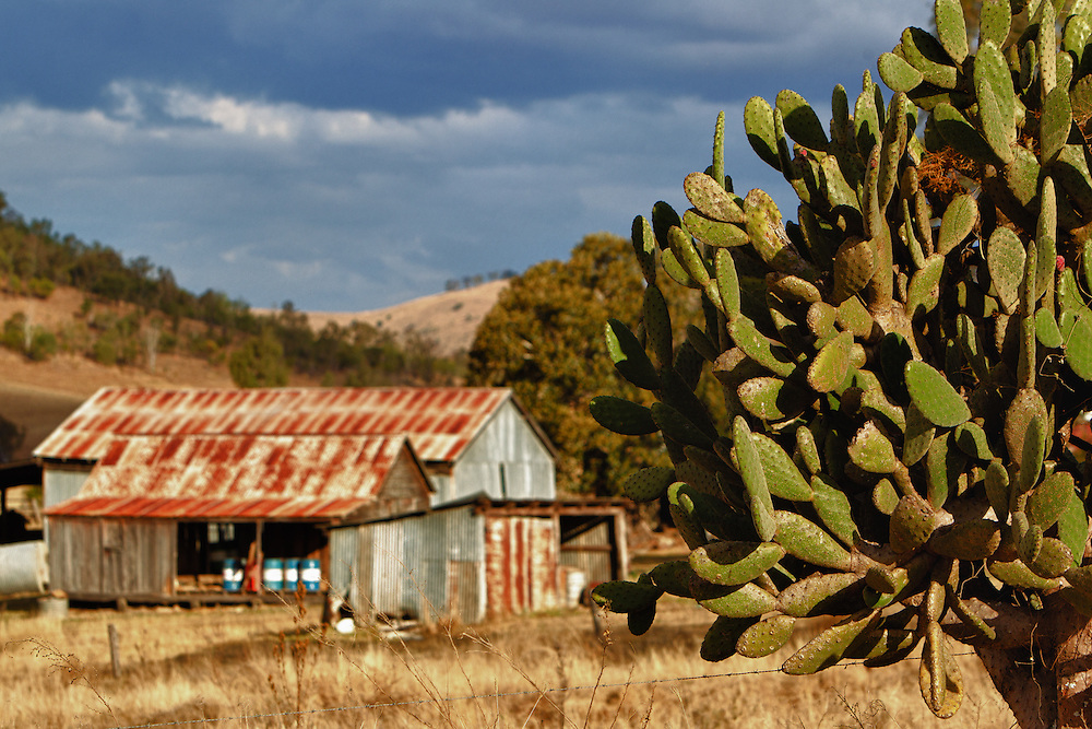 Scenic Rim.© 2011 Barry Alsop Photographer.Eyes Wide Open IMAGES..