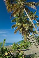 Los Bohios beach