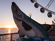Seattle's salmon statue and great wheel at sunset