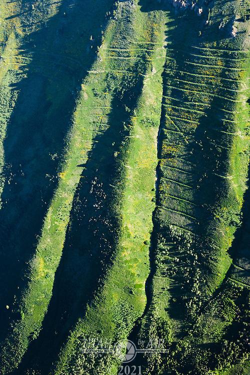 Terracing on Cascade Mountain