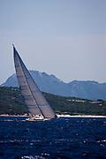 Indio sailing in the Loro Piana Superyacht Regatta.