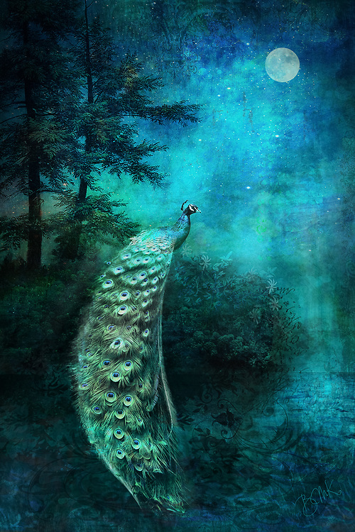 A mysterious turquoise and blue night scene with the full moon illuminating a peacock