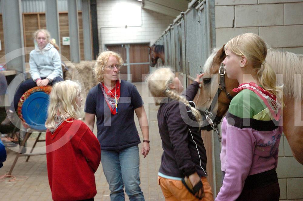 060802, dalmsholten,ned<br /> Zorgboerderij houdt driedaagse voor gehandicapten.<br /> foto: borstelen en schoonmaken van de pony moet ook worden gedaan.<br /> fotografie frank uijlenbroek&copy;2006 frank uijlenbroek