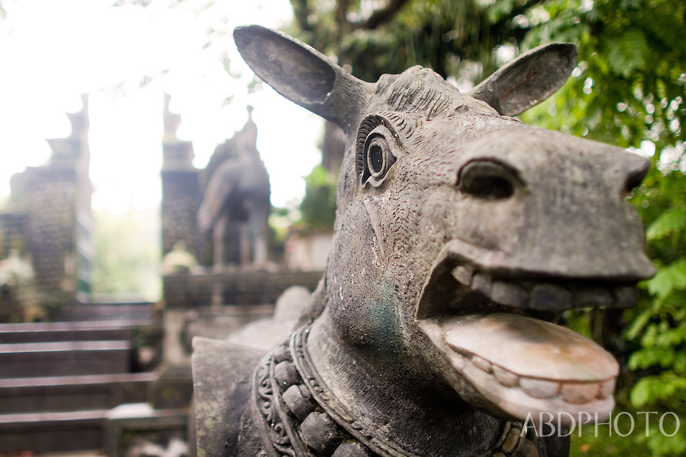 Tirta Gangga water palace Bali Indonesia