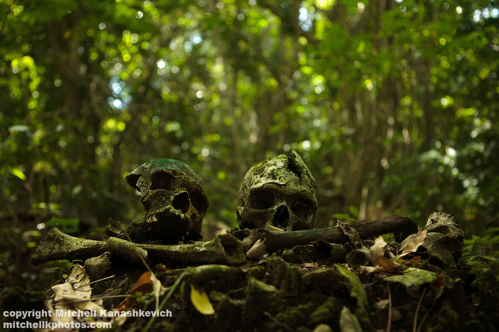 Skulls on an ancient burial ground at Melmes, the mount of skulls, South West Bay, Malekula, Vanuatu