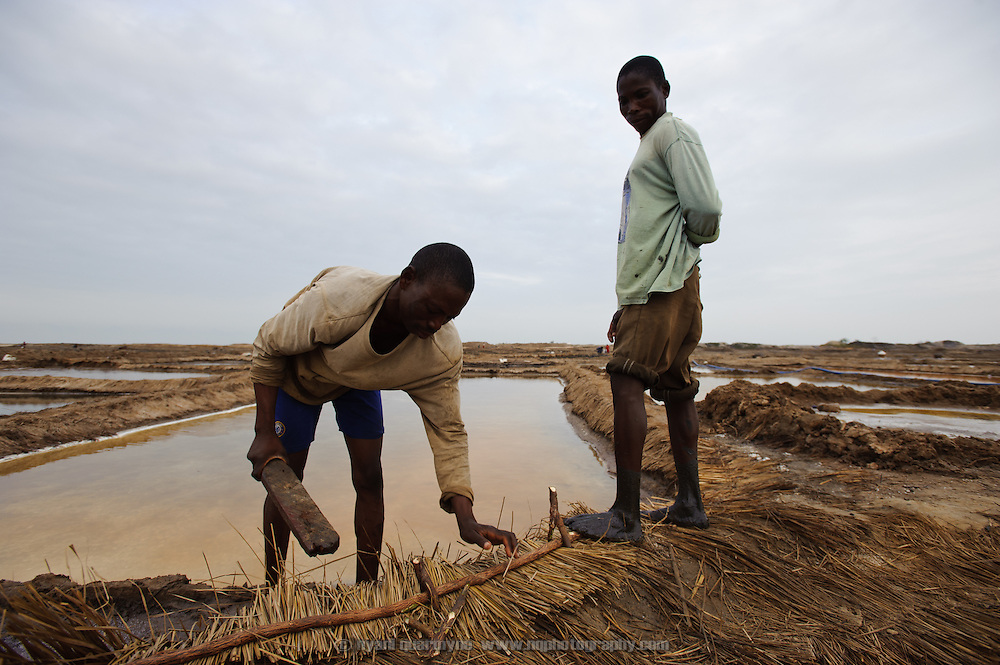 """""""Atsiakpo"""" workers reinforcing the low earthhen dikes between pans with thatch to prevent them eroding as people walk between pans. Lacking the multiple evaporation stages of industrial production, the salt produced in pans such as these is less pure."""