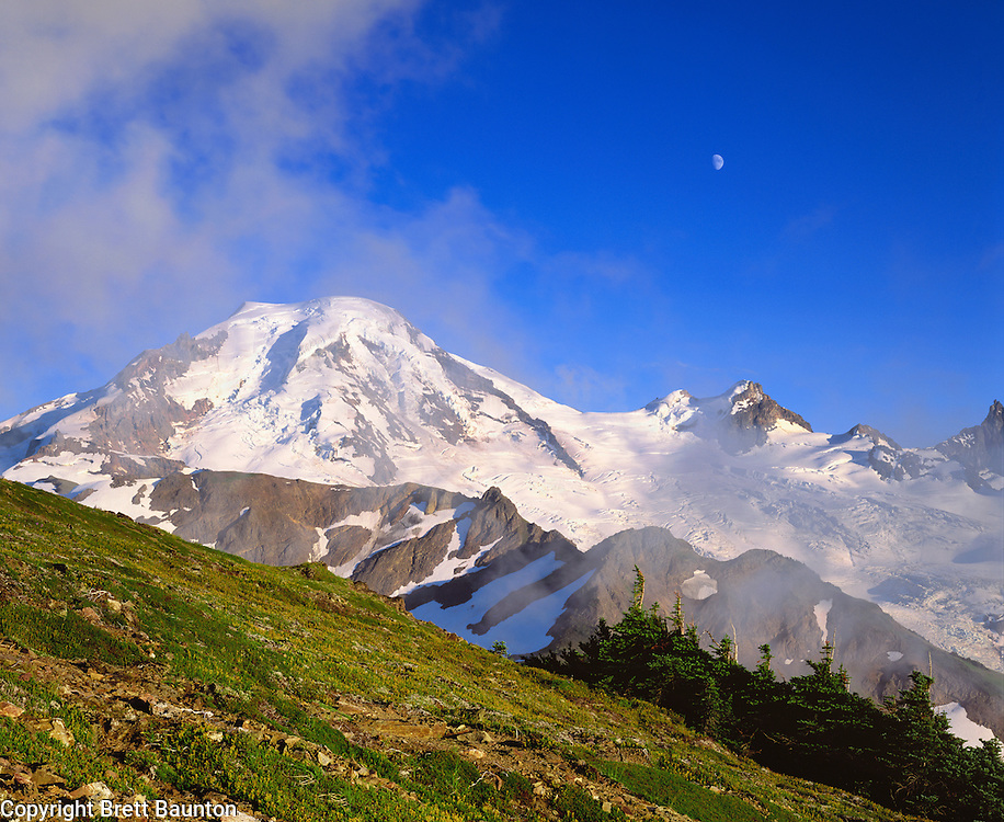 Mt. Baker, WA, USA..Mt. Baker Wilderness Area..Coleman and Roosevelt Glaciers..Fog Clearing, Moon and Mt. from Skyline Divide..Alpine Meadow..Brett Baunton.