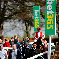 Newmarket 19th April