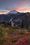 Last bit of sunset light on the clouds above Mount Baker (Komo Kulshan) after the sun has set on the Mount Baker-Snoqualmie National Forest of Washington State. Photographed from Huntoon Point on Kulshan Ridge. Fall foliage colors provided mostly by various Vaccinium species and Sitka Mountain Ash<br /> (Sorbus sitchensis).