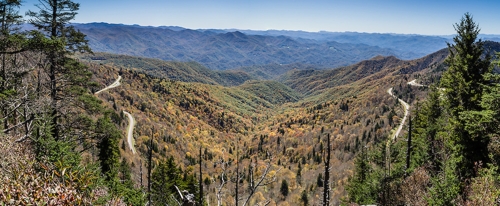 See impressive views of the Blue Ridge Mountains from the top of Waterrock Knob Trail. Fall leaves turn yellow, orange, and red in mid October. Start walking from the scenic National Park Visitor Center at Waterrock Knob, at Blue Ridge Parkway Milepost 451 in North Carolina, USA. Hike breathlessly 1.2 miles round trip with 400 feet gain to the summit of Waterrock Knob (elevation 6292 feet), the highest peak of the Plott Balsam Range, which is part of the Blue Ridge Mountains, a subset of the Appalachians. Local trees release hydrocarbons into the atmosphere and create a characteristic blue haze on pristine days as seen in this photo; but more often a white or gray haze obscures distant views due to air pollution. The 469-mile Blue Ridge Parkway connects Shenandoah National Park (in Virginia) with Great Smoky Mountains National Park in North Carolina, following ridge crestlines and the Appalachian Trail. This panorama was stitched from 3 overlapping photos.