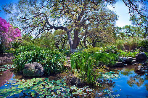 Los Angeles County Arboretum   Arboreta And Botanic Gardens In Arcadia, CA.