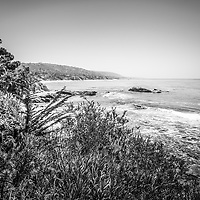 Laguna Beach California black and white picture of the Southern California coastline along the Pacific Ocean. Laguna Beach is a seaside beach community in Orange County California. Image Copyright © 2012 Paul Velgos with All Rights Reserved.