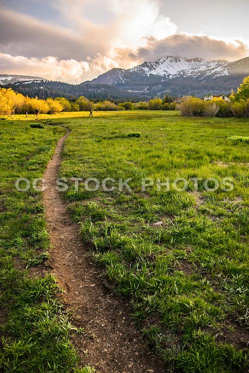 Mammoth Meadows at Mammoth Lake California