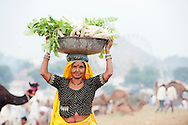 Mature Indian woman carrying large bowl ofradishes on her head at Pushkar Fair.