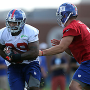 Running back Michael Cox in action during the 2013 New York Giants Training Camp at the Quest Diagnostics Training Centre, East Rutherford, New Jersey, USA. 29th July 2013. Photo Tim Clayton.