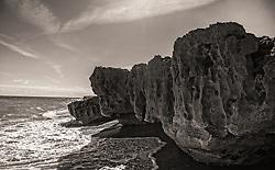 large rock formation at low tide in Blowing Rocks Preserve, Jupiter Beach, Florida