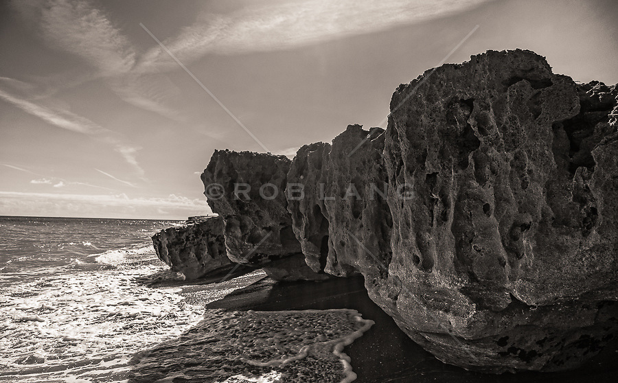 large rock formation at low tide in Blowing Rocks Preserve, Jupiter Beach, Florida