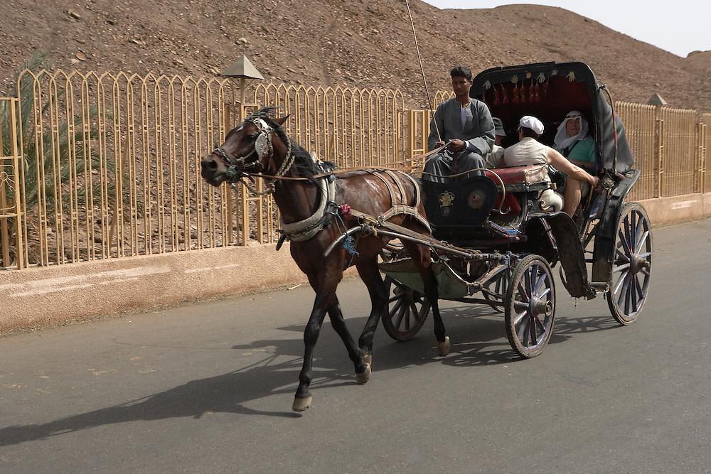 Carriage ride to Temple of Horus, Edfu, Egypt