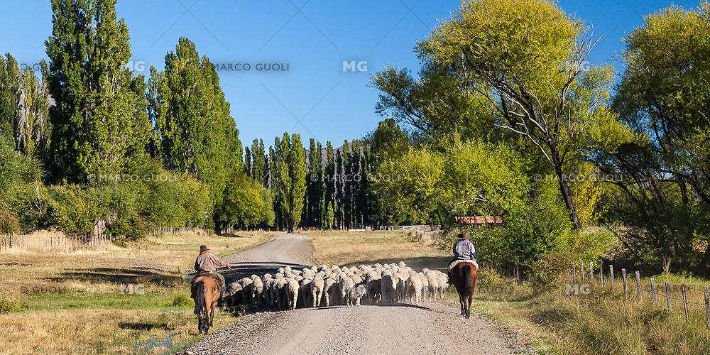 PEONES A CABALLO ARREANDO OVEJAS (CARNEROS), ESTANCIA LELEQUE, PROVINCIA DEL CHUBUT, ARGENTINA (PHOTO © MARCO GUOLI - ALL RIGHTS RESERVED)