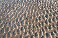 Kalaloch Beach sand ripples, Olympic National Park