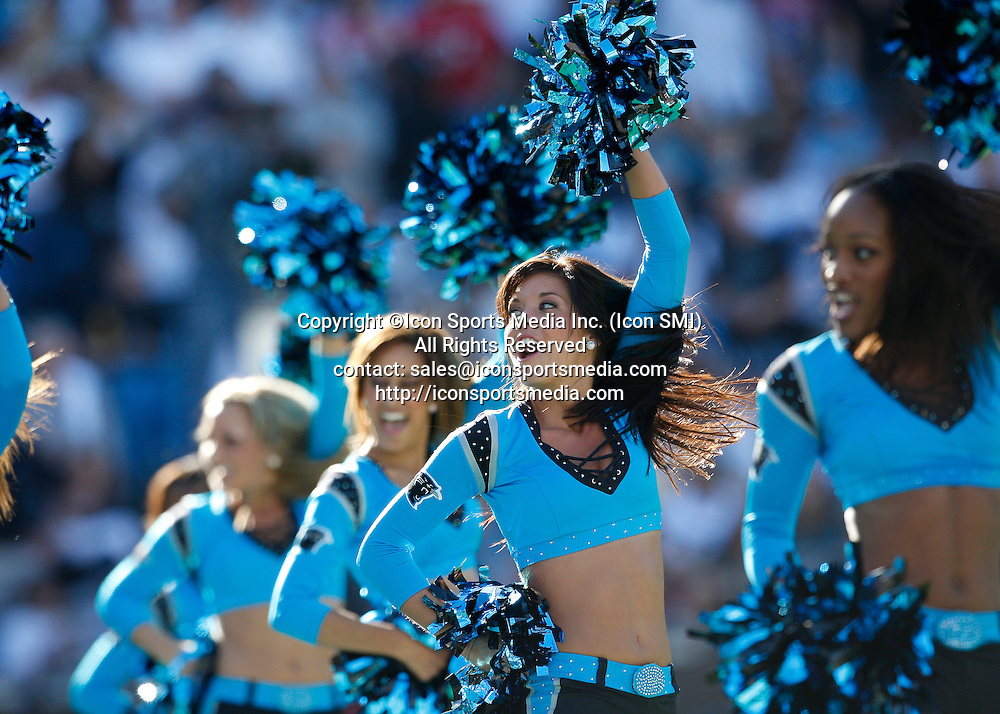 15 November 2009:  Carolina Panthers Top Cat cheerleaders performs in the Carolina Panthers 28-19 victory over the Atlanta Falcons at Bank of America Stadium in Charlotte North Carolina.