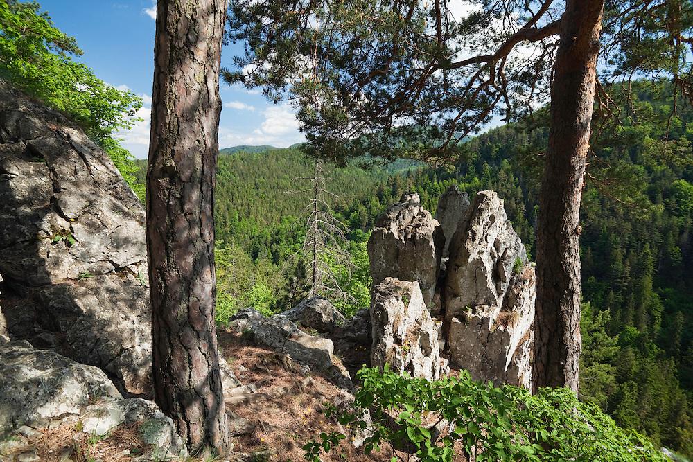 Slovak Paradise National Park, Slovensky Raj, Slovakia