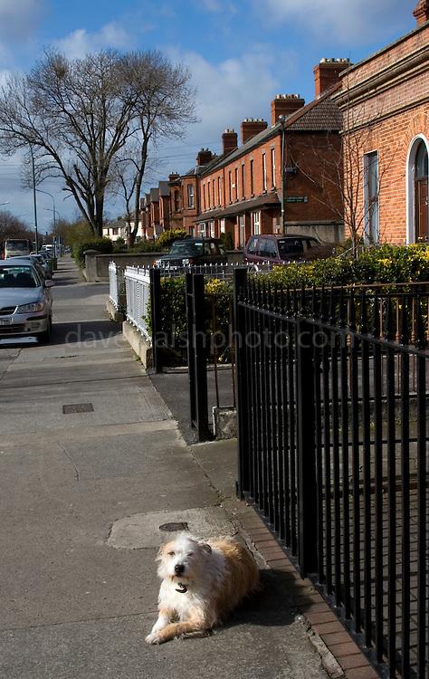 Houses on Clonliffe Road, Dublin.
