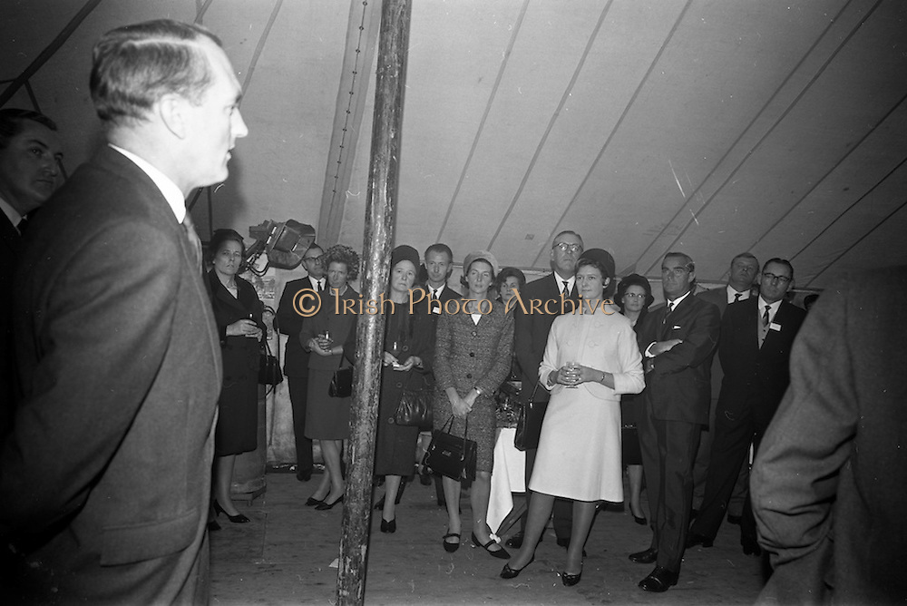 10/10/1966<br /> 10/10/1966<br /> 10 October 1966<br /> Opening of new Roma Foods Products Ltd. factory at Finglas, Dublin. Picture shows Mr. George Colley, Minister for Industry and Commerce speaking at the opening. Mrs Colley and Mrs Meade can be seen in the crowd.