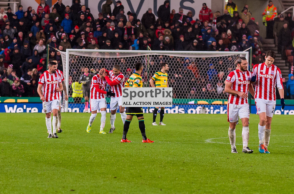 Stoke City players celebrate after an own goal by Norwich City defender Ryan Bennett (24) gives their side a 3-1 lead