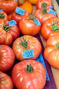 F&ouml;rs&auml;ljning av tomater hos Oceanside Farms.<br /> Homer, Alaska, USA
