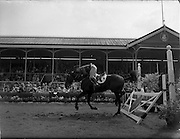 "04/08/1960<br /> 08/04/1960<br /> 04 August 1960<br /> R.D.S Horse Show Dublin (Thursday). Lieut. E.P. O'Donohue, (Ireland) nearly comes a cropper on ""Cill an Fhail"" having knocked the ""railway gate"" in the Baylon Perpetual Challenge International Trophy at the Dublin Horse Show."