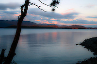 Sunset frames a lone pine above Malaspina Strait, Sunshine Coast BC