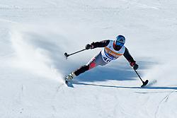 GREEN Ralph, USA, Downhill, 2013 IPC Alpine Skiing World Championships, La Molina, Spain