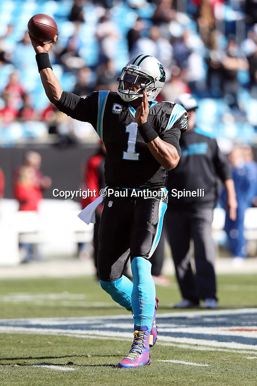 Carolina Panthers quarterback Cam Newton (1) throws a pass before the NFC Divisional Playoff NFL football game against the San Francisco 49ers on Sunday, Jan. 12, 2014 in Charlotte, N.C. The 49ers won the game 23-10. ©Paul Anthony Spinelli