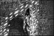 India. Woman in speckled light.