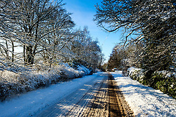 Snow glistens in the winter sunshine on a country road in South Lanarkshire<br /> <br /> (c) Andrew Wilson | Edinburgh Elite media