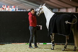 Wandres Frederic, GER, Hot Hit<br /> Jumping Mechelen 2019<br /> © Hippo Foto - Sharon Vandeput<br /> 27/12/19