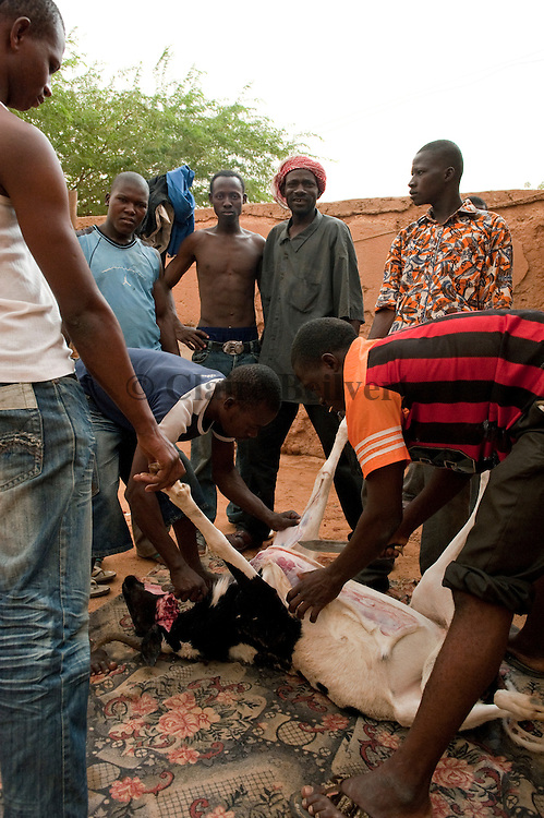"In the middle, Mohamed "" Boss"", the chief of the ghetto, and some young afriican migrants preparing a ghoat which will be cooked later."