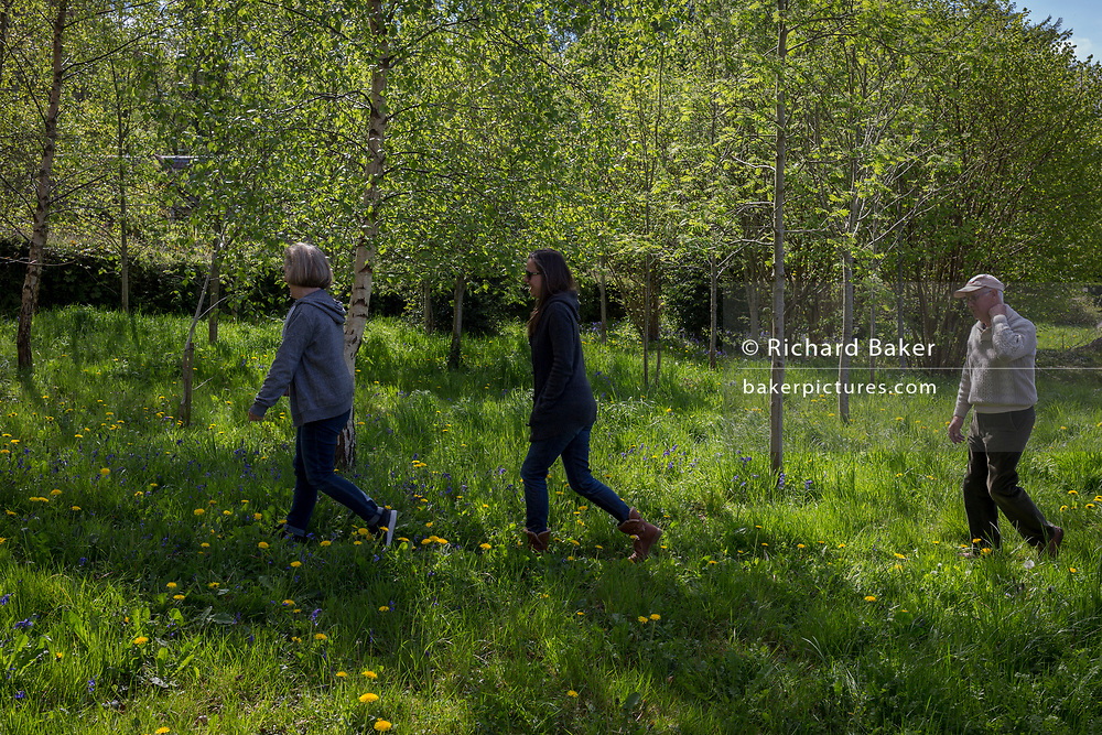 A family walks through spring woods, on 23rd April 2017, in Wrington, North Somerset, England.