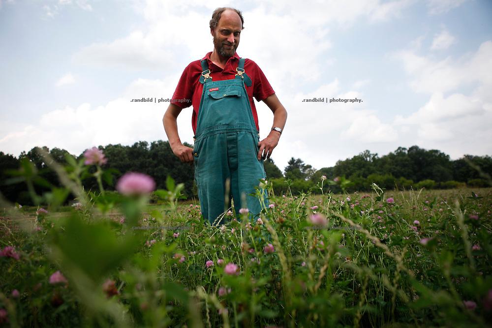 Gärtnermeister Klaus Verbeck im grünen und brühenden Klee auf dem Gärtnerhof Bienenbüttel. Klee wird als natürlicher Stickstoffdünger verwendet.