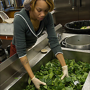 "Volunteer washing collard greens three times in kitchen sink, food for Thanksgiving being prepared a week in advance in Sister Jean's Kitchen. .A former casino chef, Webster, 74, found her calling when she saw a man rummaging through a garbage can in search of food. Now she runs a soup kitchen that feeds up to 400 homeless people a day, five days a week in the dinning room of the First Presbyterian Church of Atlantic City. No one is turned away. Jean has been called ""Sister Jean"" or ""Saint Jean"" or ""the Mother Teresa of Jersey."""