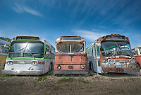 Three old busses at the Shoreline Trolley Museum near Kennebunkport, Maine U.S.A