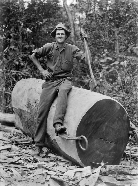 Lumberjack, Queensland, Australia, 1930