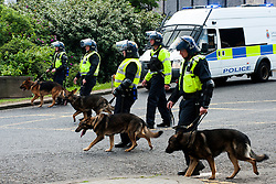 The English Defence League (EDL) return to Sheffield to lay flowers at Sheffield War Memorial . resulting in a police operationlasting over 5 hours involving Officers from Wales, South Yorkshire, Greater Manchester, West Yorkshire, Lancashire and Mersyside and Durham Police forces. <br /> <br /> Police Dog Handlers follow the EDL towards Sheffield Railway Station<br /> <br /> 8 June 2013<br /> Image © Paul David Drabble<br /> www.pauldaviddrabble.co.uk