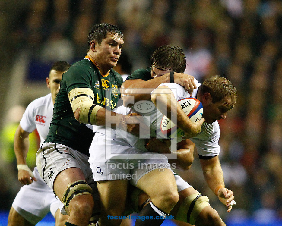 Picture by Andrew Tobin/Focus Images Ltd +44 7710 761829.24/11/2012. David Plaice of England is tackled by Francois Louw of South Africa during the QBE Internationals  match at Twickenham Stadium, Twickenham.